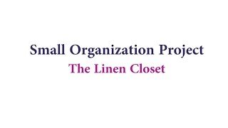 Small Organization Project: The Linen Closet