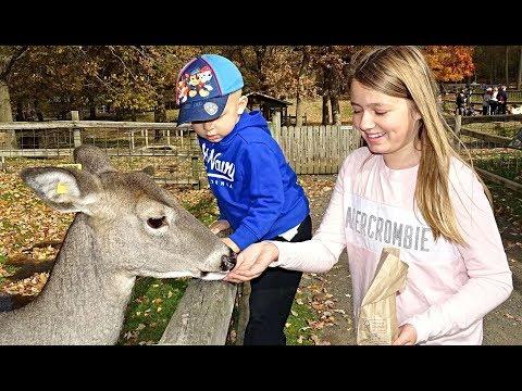 Goat Did Something TERRIBLE | Children Animal Video