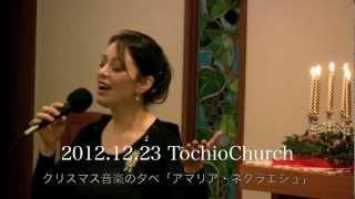 クリスマス礼拝音楽の夕べ「アマリア・ネクラエシュ」