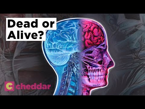 You Can Be Legally Dead In One Place And Alive In Another - Cheddar Explains