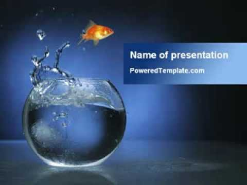 Aquarium Fish Is Jumping PowerPoint Template By PoweredTemplate.com