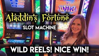 Aladdin's Fortune Slot Machine! Max Bet! Nice Win!!