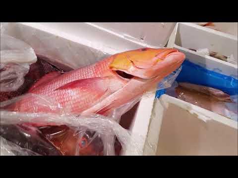 লন্ডনের সবচেয়ে বড় মাছের বাজার, বিলিংসগেট/Billingsgate Fish Market London'