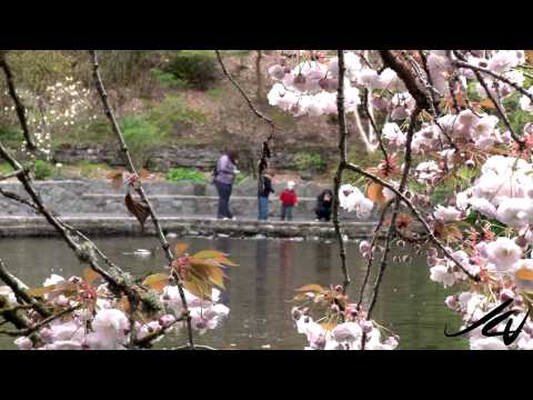 Portland Oregon Sights from April 12, 2013 - YouTube