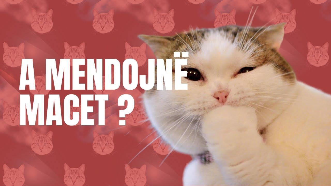 Download Besi Andi Podcast #43