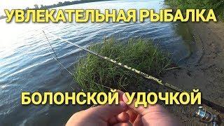 Увлекательная рыбалка.Ловля болонской удочкой в проводку на Оке