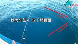 20190804 一支釣 (我到底在釣石????)上集