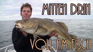 Mitten drin und voll am Fisch - Quantum Sea Team in Smöla
