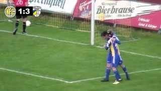 22.Spieltag RL Saison14/15 VFC Plauen - FC Carl Zeiss Jena