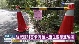 螢火蟲季來了 遊客開車賞螢破壞生態 | 華視新聞 20200504