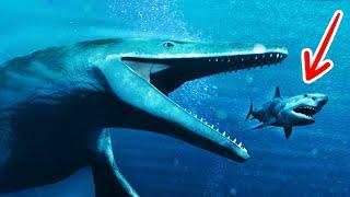 14 Fakta dan Mitos tentang Hiu dan Monster Laut Lainnya