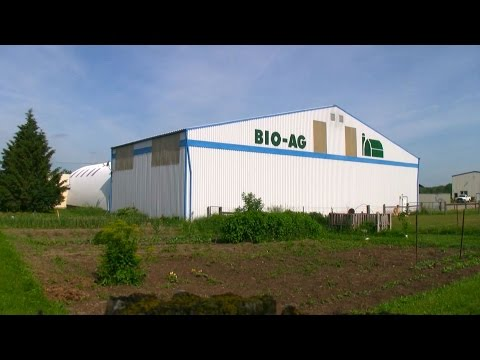 Bio-Ag: Non-GMO, The Only Way ~ Farming into the Future