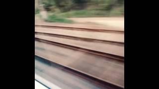Поезд,  электричка,  майнкрафт,  дота,  кс го,  секс.