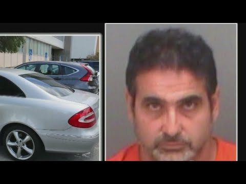 Clearwater Police: Man left daughter in car while he attended court