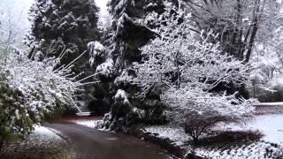 Neige à Luxembourg-ville (20-21 novembre 2013)
