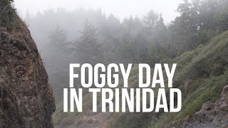 Foggy Day in Trinidad