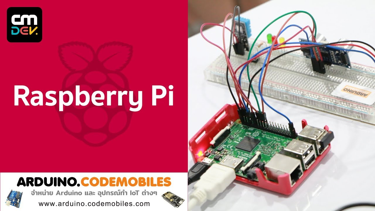 How to set date and time in Raspberry Pi syncing the Internet