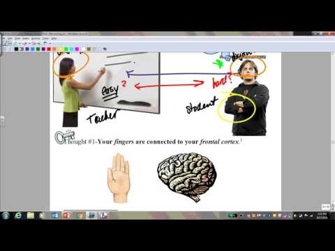 Preview Video 1 4 Brain in Hand problem Solving