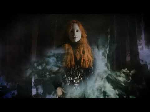 Wildwood - Tori Amos