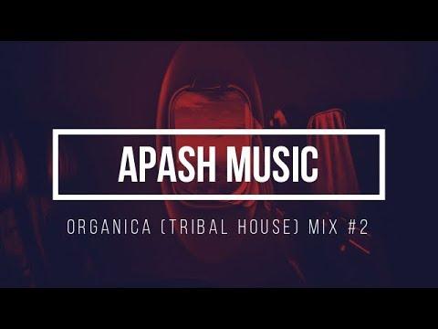 ORGANICA (TRIBAL HOUSE)MIX #2