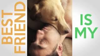 Lifes A Bark Dog Books Video Trailer 2