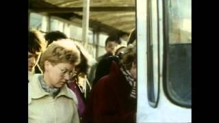 Le Bus - De 1965 à nos jours // L'autobus de 1965 à nos jours