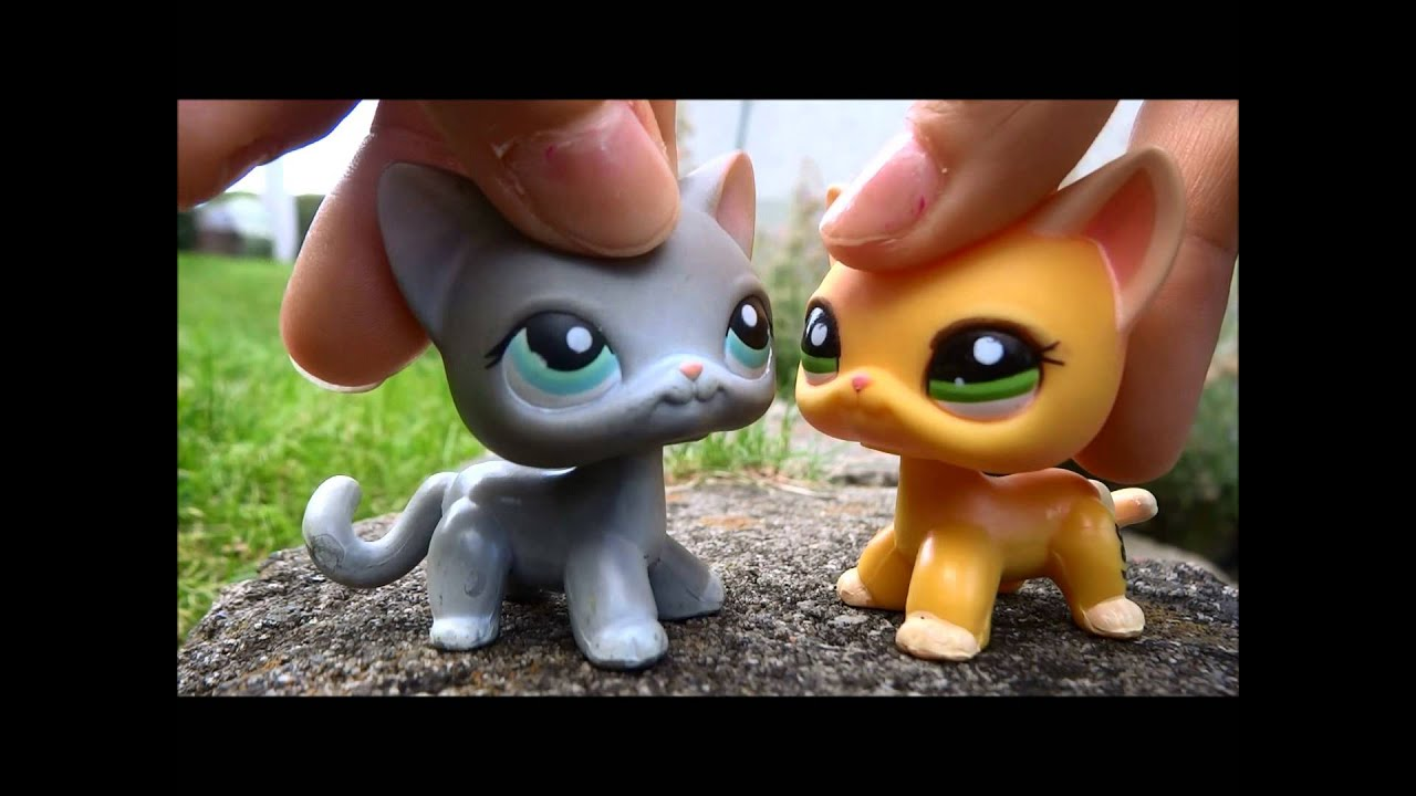 how to make a warrior cat den for lps