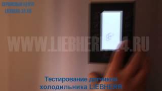 Ремонт холодильников Liebherr(Ремонт холодильников Liebherr в сервисном центре Liebherr24.ru., 2015-05-29T08:42:57.000Z)