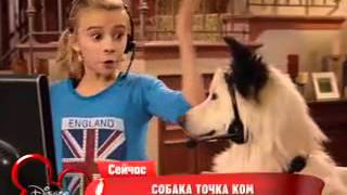 Собака точка ком   1 сезон, 5 6 серия