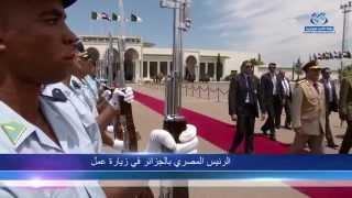 الرئيس المصري في زيارة عمل قصيرة بالجزائر بدعوة من الرئيس عبد العزيز بوتفليقة