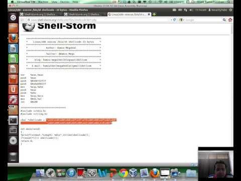 [SecurityTube.net] Shellcoding Basics