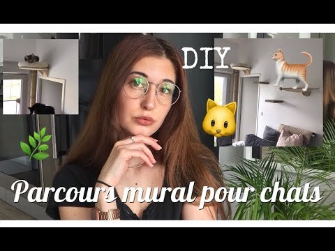 diy parcours mural simple pour les chats haul vegan youtube. Black Bedroom Furniture Sets. Home Design Ideas