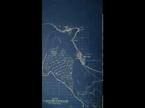 Oyster land Map, Tillamook Bay, Oregon, 1931