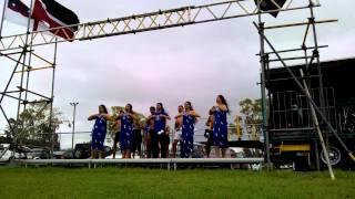 Nga Hau E Wha Waitangi Day