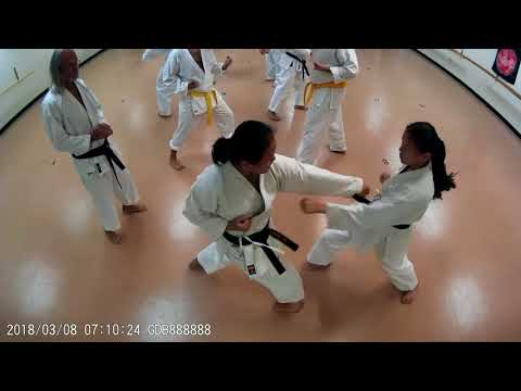 Karate drill reverse punch