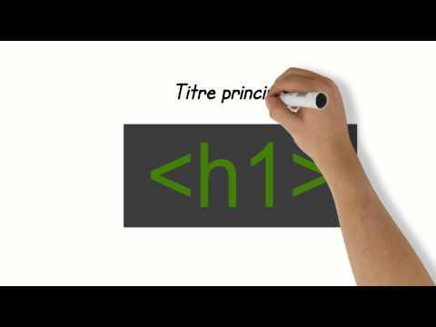 Le Web Et Le HTML