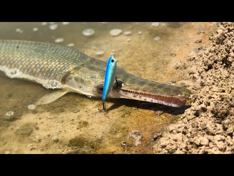 Gar Fishing With Lures!