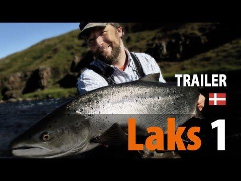 Laks 1 Trailer