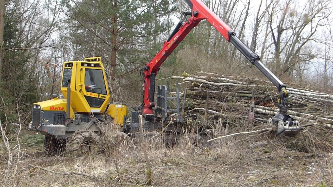Erstpflege FND Kiesgrube Fließ - Abtransport Schnittgut mit Forwarder
