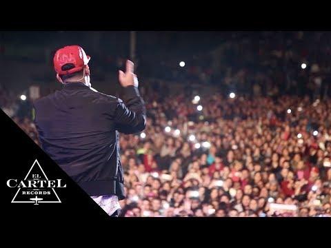 Daddy Yankee | lo mejor de Uruguay (Live)