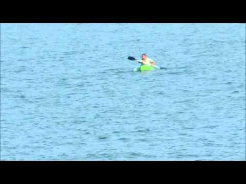 Jaws At Beverly Beach Florida