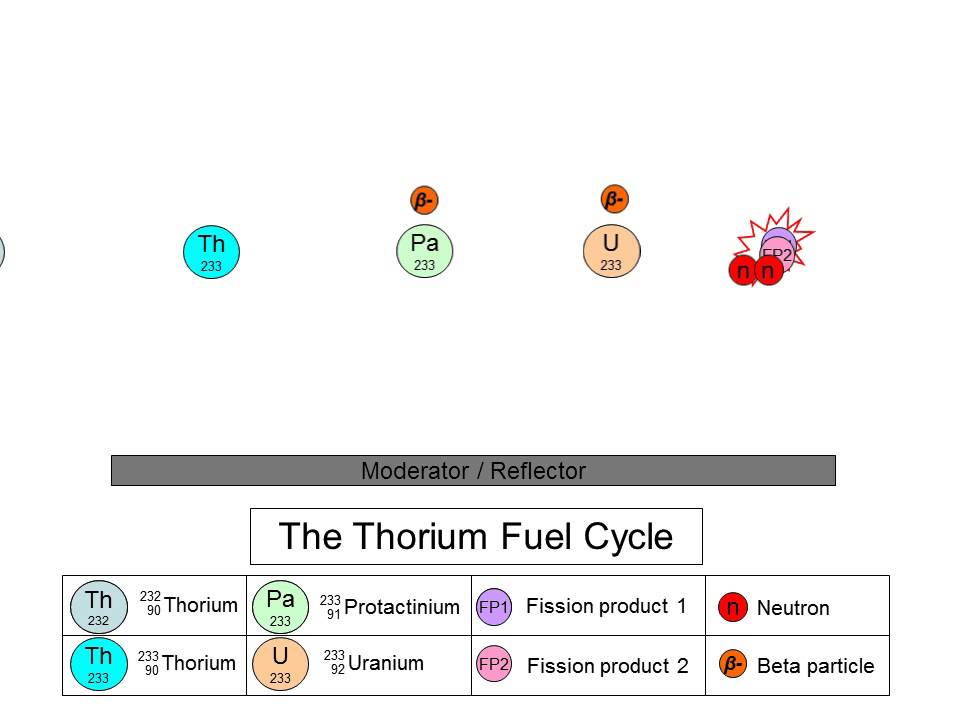 The Thorium Fuel Cycle