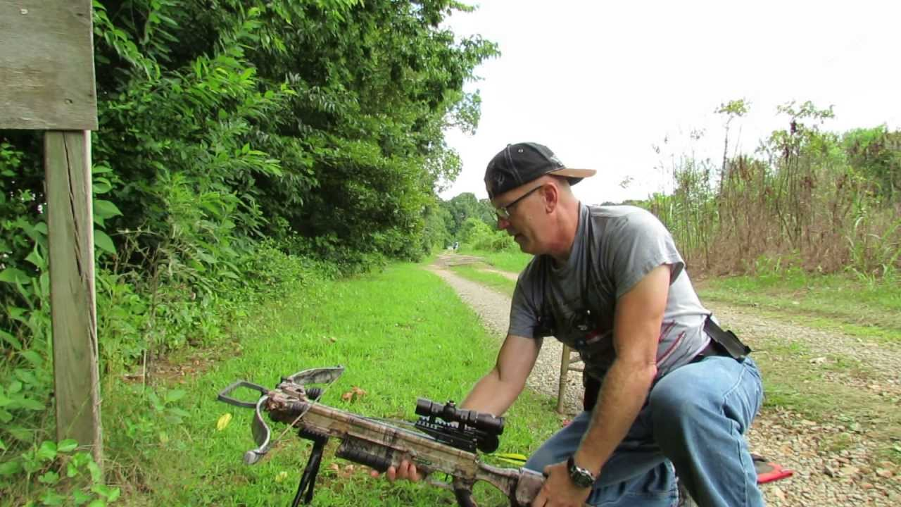 How well does your crossbow shoot long range ? | Page 2