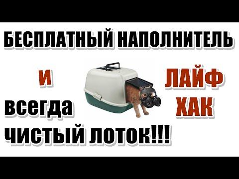 Вопрос: Как самому сделать наполнитель для кошачьего туалета?