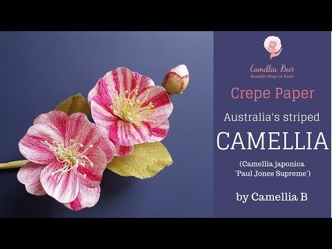 Crepe paper flower, How to make paper Camellia flower from crepe paper,  easy tutorial