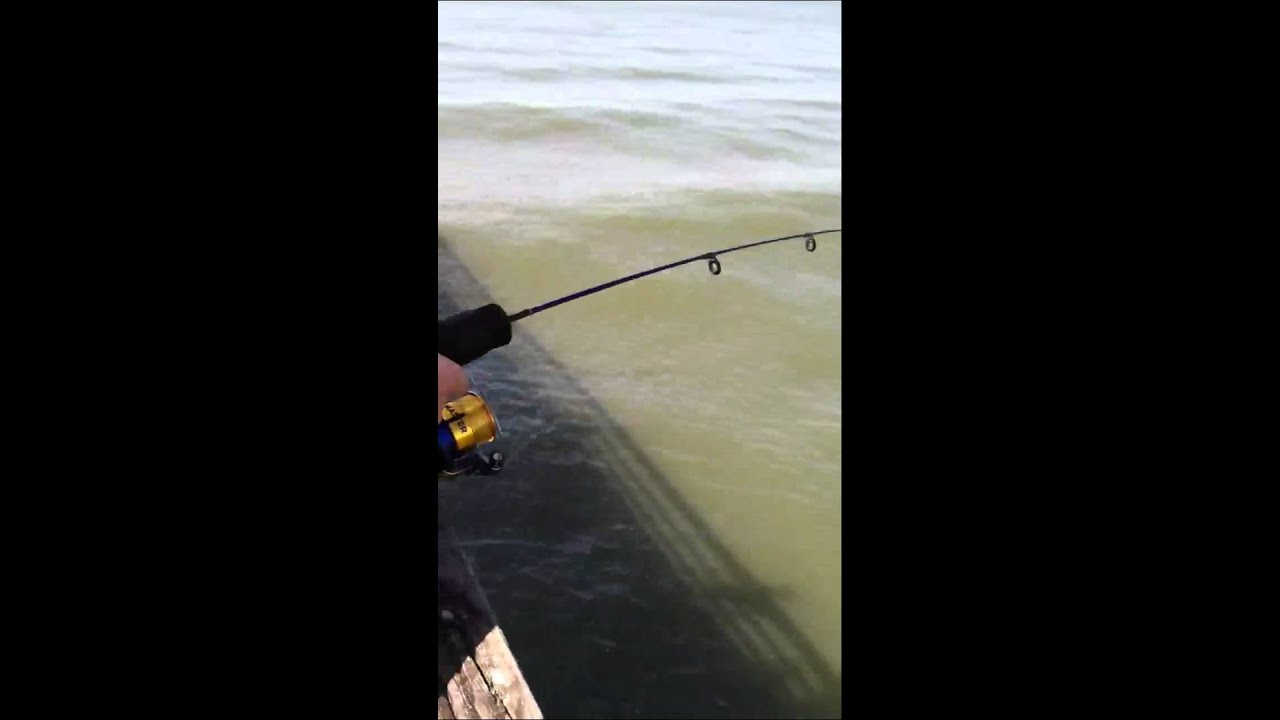The mighty mite fishing pole on the pier youtube for Mighty mite fishing pole