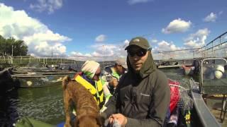 «Трое в лодке не считая собаки» часть 2.