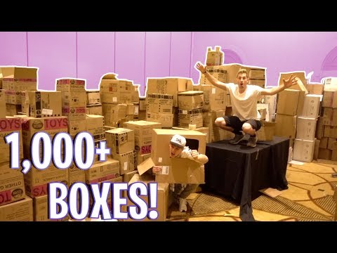 BIGGEST BOX FORT! 1,000+ BOXES!