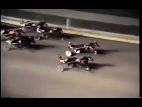 1981 Roosevelt Raceway EMBASSY EFFORT Gerald Sarama