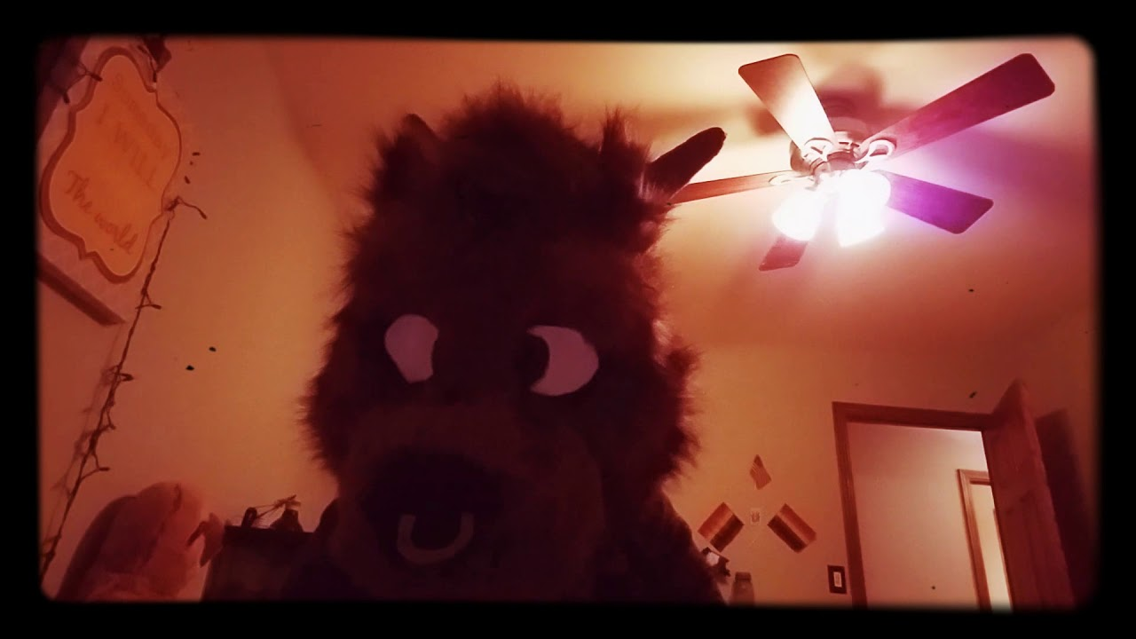 Furry ASMR 4K | New camera and macbook issues - YouTube
